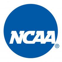 Team Golf Tour Mark NCAA Putter Grip